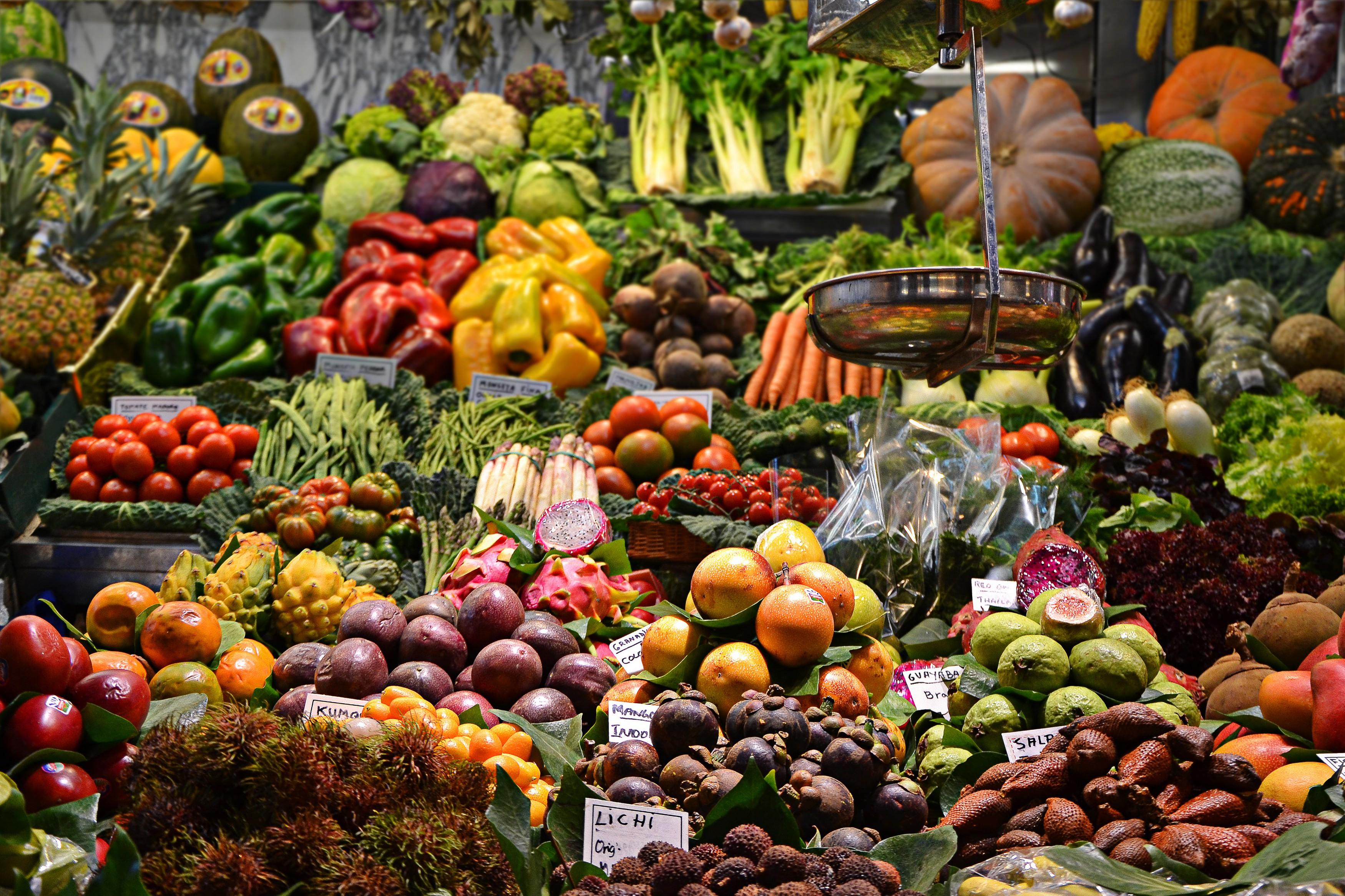 o que é dieta paleo